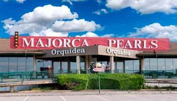Perlas Orquidea